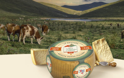 New product: Parmigiano Reggiano Only From Italian Simmental Breed