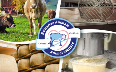 Our Group certifies the Parmigiano Reggiano supply chain for Animal Wellness
